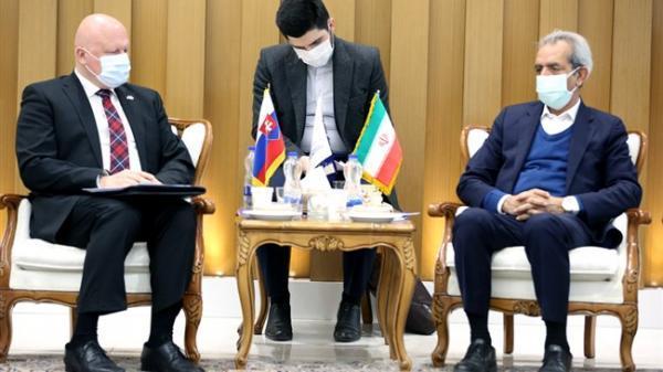 رویکرد منطقه ای، مبنای توسعه روابط مالی ایران و اسلواکی باشد