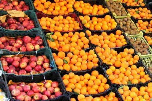 مخالفت وزارت جهاد کشاورزی با واردات سیب و پرتقال توسط وزارت صنعت