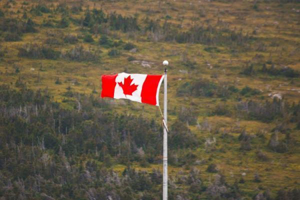 تحصیل رایگان در کانادا با لتس گو یونی
